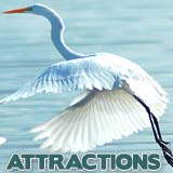 SW FL Naples Attractions
