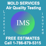 International Mold Services